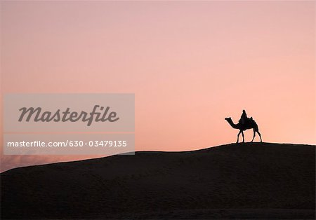 Silhouette of a person riding a camel, Jaisalmer, Rajasthan, India Stock Photo - Premium Royalty-Free, Image code: 630-03479135