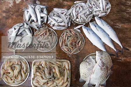 High angle view of dead fish at a market stall, Cochin, Kerala, India Stock Photo - Premium Royalty-Free, Image code: 630-03479203