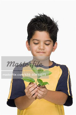 Close-up of a boy holding a plant Stock Photo - Premium Royalty-Free, Image code: 630-03481273