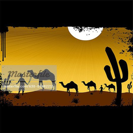Men leading camels in a desert, Rajasthan, India Stock Photo - Premium Royalty-Free, Image code: 630-03482215