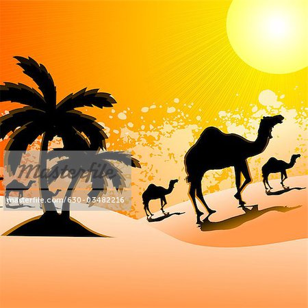 Silhouette of camels walking in a desert landscape, Rajasthan, India Stock Photo - Premium Royalty-Free, Image code: 630-03482216