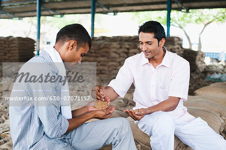 Man showing sample of wheat to a customer, Anaj Mandi, Sohna, Gurgaon, Haryana, India Stock Photo - Premium Royalty-Free, Image code: 630-07071197