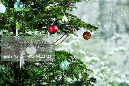 Christmas tree, close-up Stock Photo - Premium Royalty-Free, Image code: 632-06118429