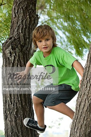 Boy climbing tree Stock Photo - Premium Royalty-Free, Image code: 632-06118888