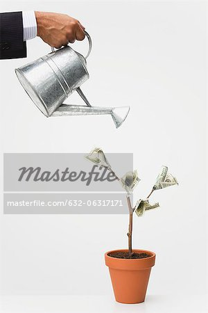 Businessman watering money tree, cropped Stock Photo - Premium Royalty-Free, Image code: 632-06317171