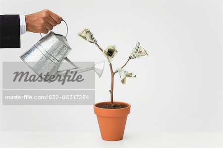 Businessman watering potted money tree, cropped Stock Photo - Premium Royalty-Free, Image code: 632-06317284