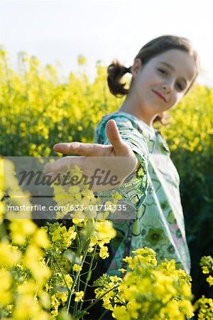 Girl standing in field of canola, arm out to touch flowers Stock Photo - Premium Royalty-Free, Image code: 633-01714335