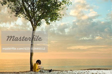 Boy sitting beneath tree on beach reading book Stock Photo - Premium Royalty-Free, Image code: 633-03445012