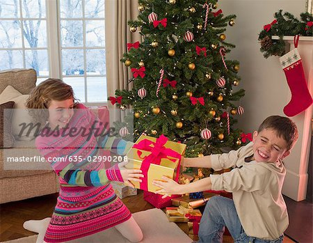 Boy and girl tugging at Christmas gift in living room Stock Photo - Premium Royalty-Free, Image code: 635-02990208