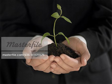 Man holding seedling and soil Stock Photo - Premium Royalty-Free, Image code: 635-03373175