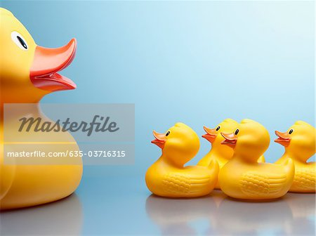 Mother rubber duck and several rubber ducklings Stock Photo - Premium Royalty-Free, Image code: 635-03716315