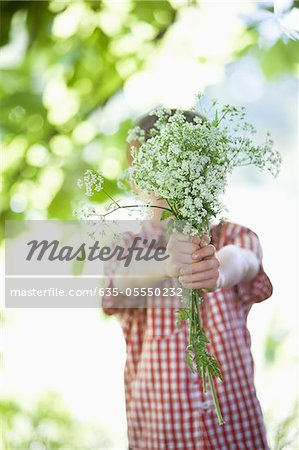 Boy offering bouquet of flowers Stock Photo - Premium Royalty-Free, Image code: 635-05550232