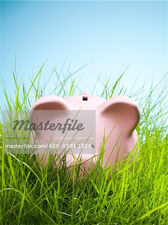 Piggy bank in grass Stock Photo - Premium Royalty-Free, Image code: 635-05550300