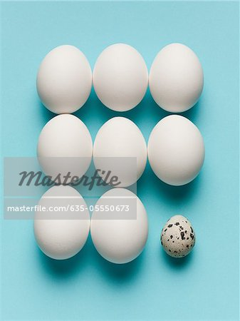 Speckled egg with large white eggs Stock Photo - Premium Royalty-Free, Image code: 635-05550673