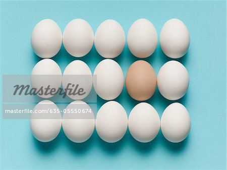 Brown egg with large white eggs Stock Photo - Premium Royalty-Free, Image code: 635-05550674