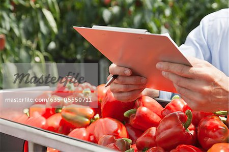 Technician with clipboard examining produce Stock Photo - Premium Royalty-Free, Image code: 635-05550711