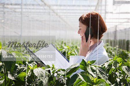Scientist talking on cell phone in greenhouse Stock Photo - Premium Royalty-Free, Image code: 635-05550732