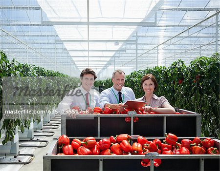 Workers in greenhouse standing with produce Stock Photo - Premium Royalty-Free, Image code: 635-05550758