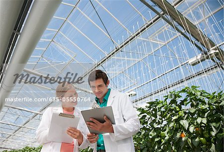 Scientists writing on clipboards in greenhouse Stock Photo - Premium Royalty-Free, Image code: 635-05550764