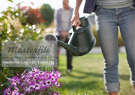 Woman watering flowers in garden with watering can Stock Photo - Premium Royalty-Free, Image code: 635-05656191