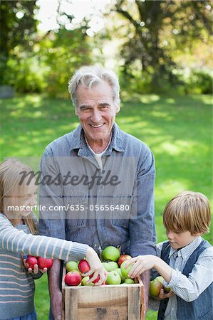 Grandfather and grandchildren with bushel of apples in orchard Stock Photo - Premium Royalty-Free, Image code: 635-05656480