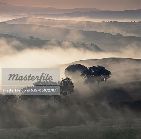 Rural landscape cloaked in fog Stock Photo - Premium Royalty-Free, Image code: 635-05972787