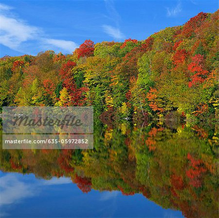 Autumn trees reflected in still lake Stock Photo - Premium Royalty-Free, Image code: 635-05972852