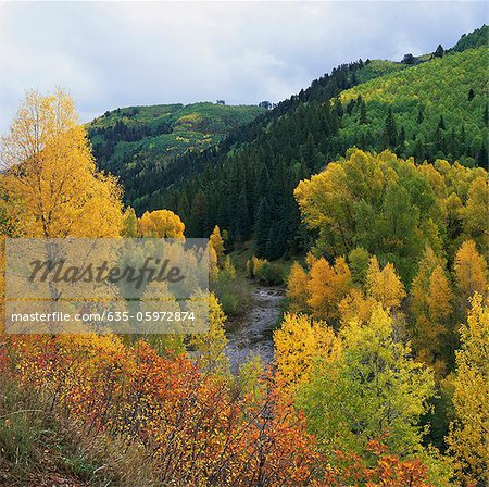 Autumn trees and hills in rural landscape Stock Photo - Premium Royalty-Free, Image code: 635-05972874