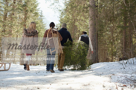 Friends carrying fresh cut Christmas tree in woods Stock Photo - Premium Royalty-Free, Image code: 635-07364088