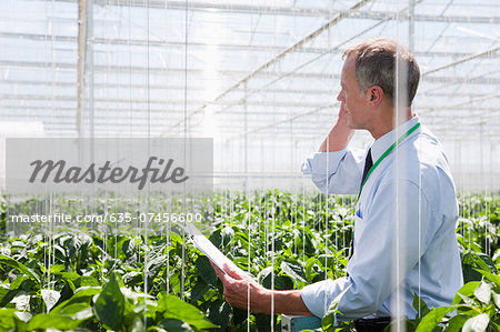 Businessman talking on cell phone in greenhouse Stock Photo - Premium Royalty-Free, Image code: 635-07456600