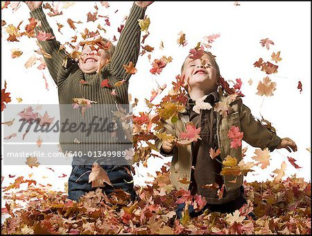 Young children playing in pile of fallen leaves Stock Photo - Premium Royalty-Free, Image code: 640-01349989