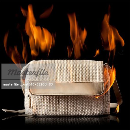purse on fire Stock Photo - Premium Royalty-Free, Image code: 640-02953483