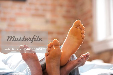 Four feet under blankets Stock Photo - Premium Royalty-Free, Image code: 640-03261476