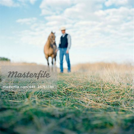 USA, Utah, Mapleton, Cowboy standing with horse at pasture, focus on grass Stock Photo - Premium Royalty-Free, Image code: 640-05761380