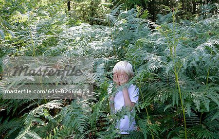 Boy hiding in ferns Stock Photo - Premium Royalty-Free, Image code: 649-02666009
