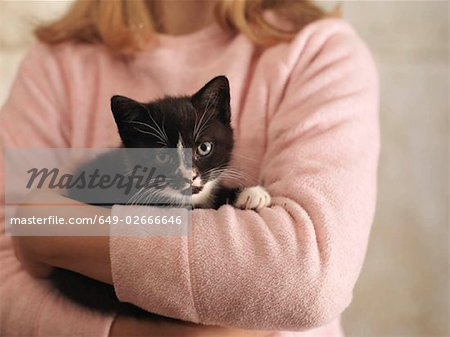 Girl's Hands Holding Kitten Stock Photo - Premium Royalty-Free, Image code: 649-02666646