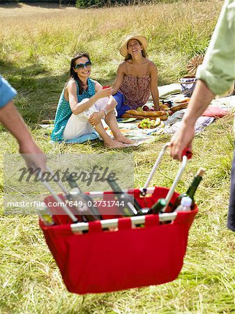 Friends having a picnic in a field Stock Photo - Premium Royalty-Free, Image code: 649-02731744