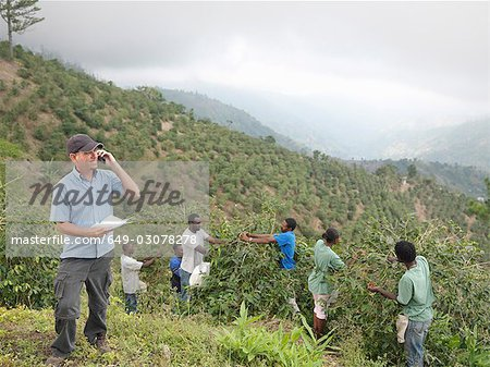 Manager & Workers Picking Coffee Beans Stock Photo - Premium Royalty-Free, Image code: 649-03078278