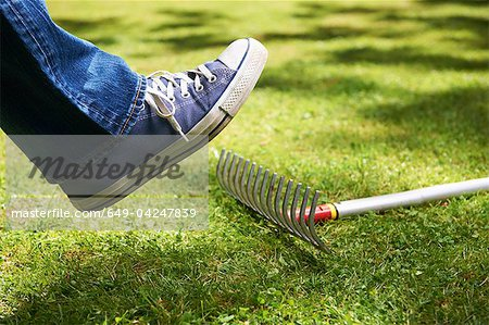 Foot about to step on rake Stock Photo - Premium Royalty-Free, Image code: 649-04247839