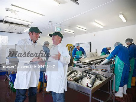 Workers talking in fish processing plant Stock Photo - Premium Royalty-Free, Image code: 649-05649447