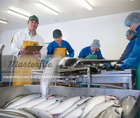 Workers in fish processing plant Stock Photo - Premium Royalty-Free, Image code: 649-05649449