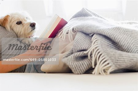 Woman reading in bed with dog Stock Photo - Premium Royalty-Free, Image code: 649-05801033