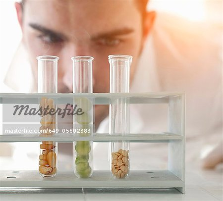 Scientist examining seeds in test tubes Stock Photo - Premium Royalty-Free, Image code: 649-05802383