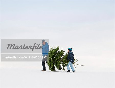 Father and son carrying Christmas tree Stock Photo - Premium Royalty-Free, Image code: 649-06001297