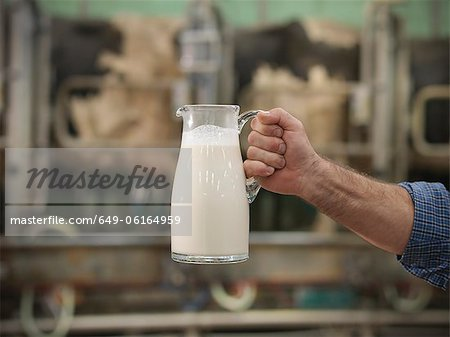 Farmer holding milk in milking parlor Stock Photo - Premium Royalty-Free, Image code: 649-06164959