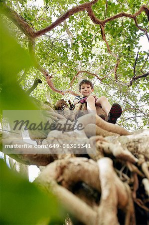 Boy sitting in tree top Stock Photo - Premium Royalty-Free, Image code: 649-06305341