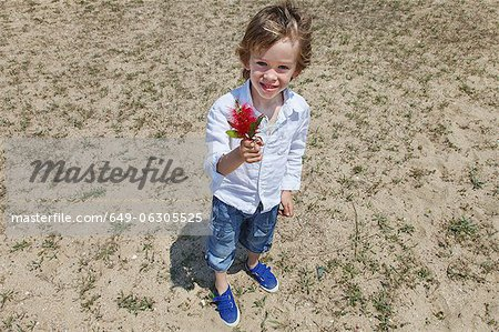 Boy holding flower on grassy beach Stock Photo - Premium Royalty-Free, Image code: 649-06305525