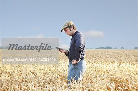 Farmer using cell phone in crop field Stock Photo - Premium Royalty-Free, Image code: 649-06353299