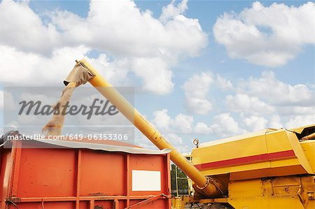 Grain elevator pouring into container Stock Photo - Premium Royalty-Free, Image code: 649-06353306