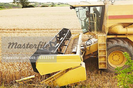 Thresher working in crop field Stock Photo - Premium Royalty-Free, Image code: 649-06353308